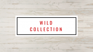 banner dekton wild collection marmoleria portaro